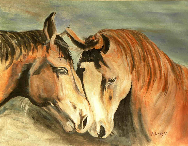 029 Pferde