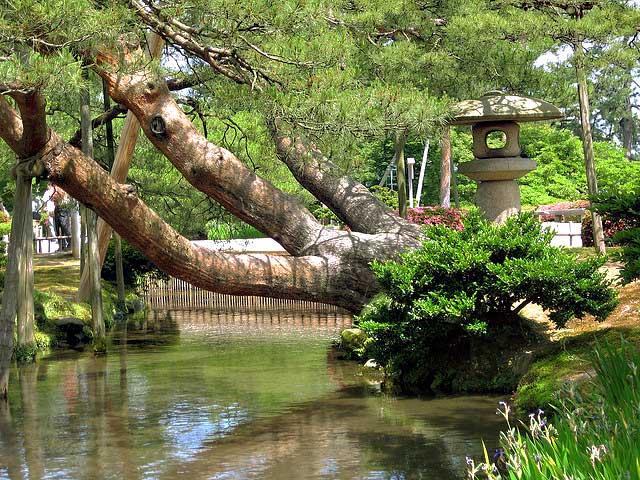 Mirando al mundo con sentimientos el jard n kenrokuen en for Jardin kenrokuen