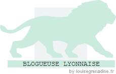 Macaron des blogueurs lyonnais