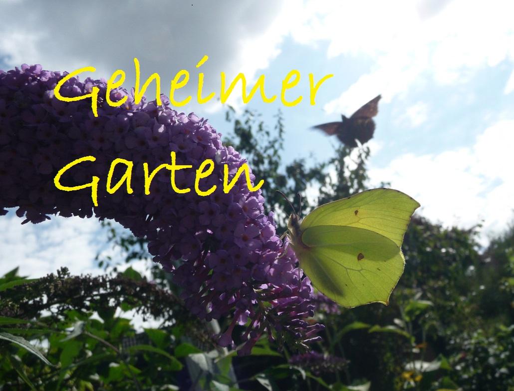 Geheimer Garten