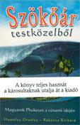 Riportkönyv a cunamiról