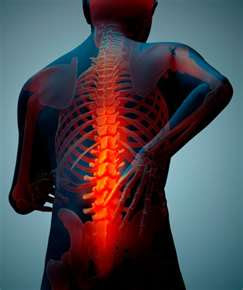 different kinds of chronic pain back
