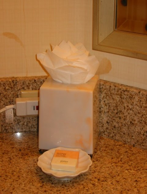 Why Do Hotel Rooms Have Ice Bucket