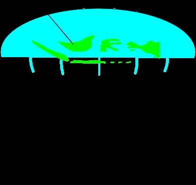 kumpulan Logo dunia - logo-logo bola dunia - logo mendunia