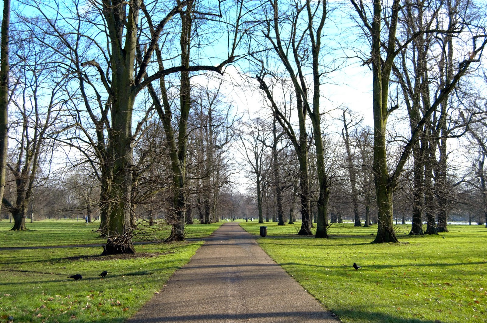 winter walk in Kensington Gardens