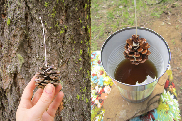 Campy Camp Crafts, A Wayward Wind, Pinecone Fire Starters