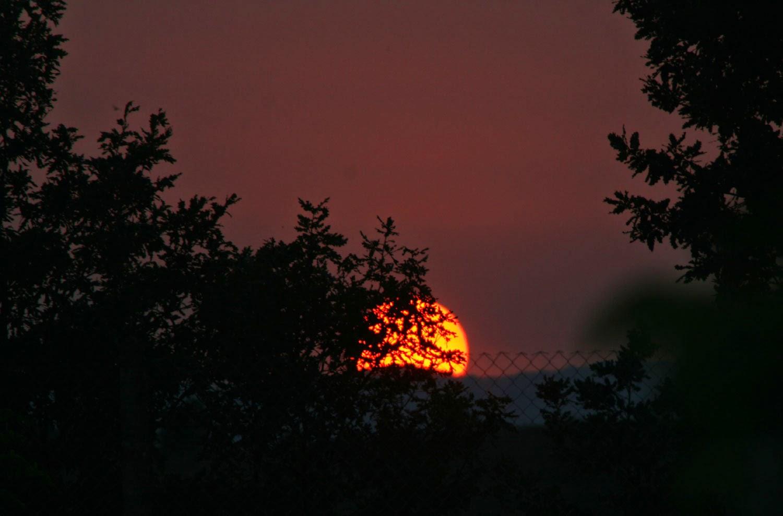 What a gorgeous sun down