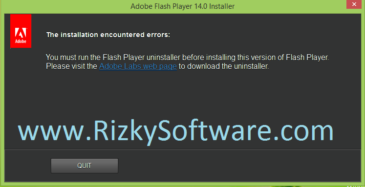 Download Flash Player 14.0.0.146 Offline Installer Terbaru [ IE ]