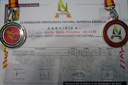 Nacional FOCDE 2017