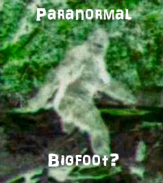 is Bigfoot Paranormal?