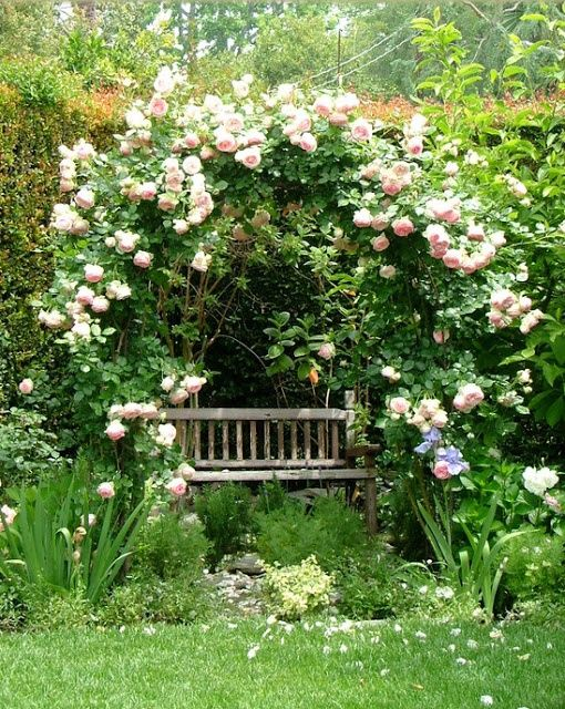 mariondee designs garden arch inspiration for my new