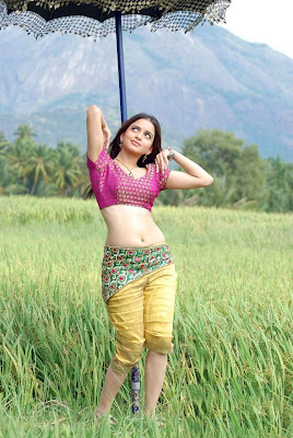 Actress Sheena Shahabadi Hot Pics
