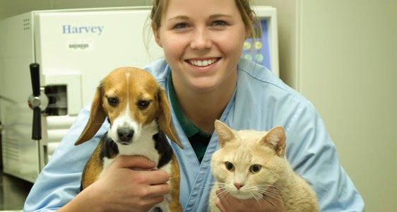 Veterinary technician canada