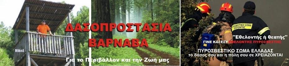 ΔΑΣΟΠΡΟΣΤΑΣΙΑ ΒΑΡΝΑΒΑ
