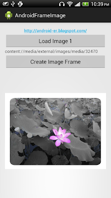 Bitmap image with frame