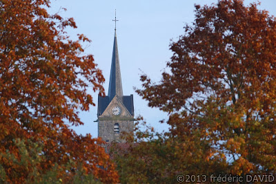 clocher église matin arbres automne Sénart Seine-et-Marne