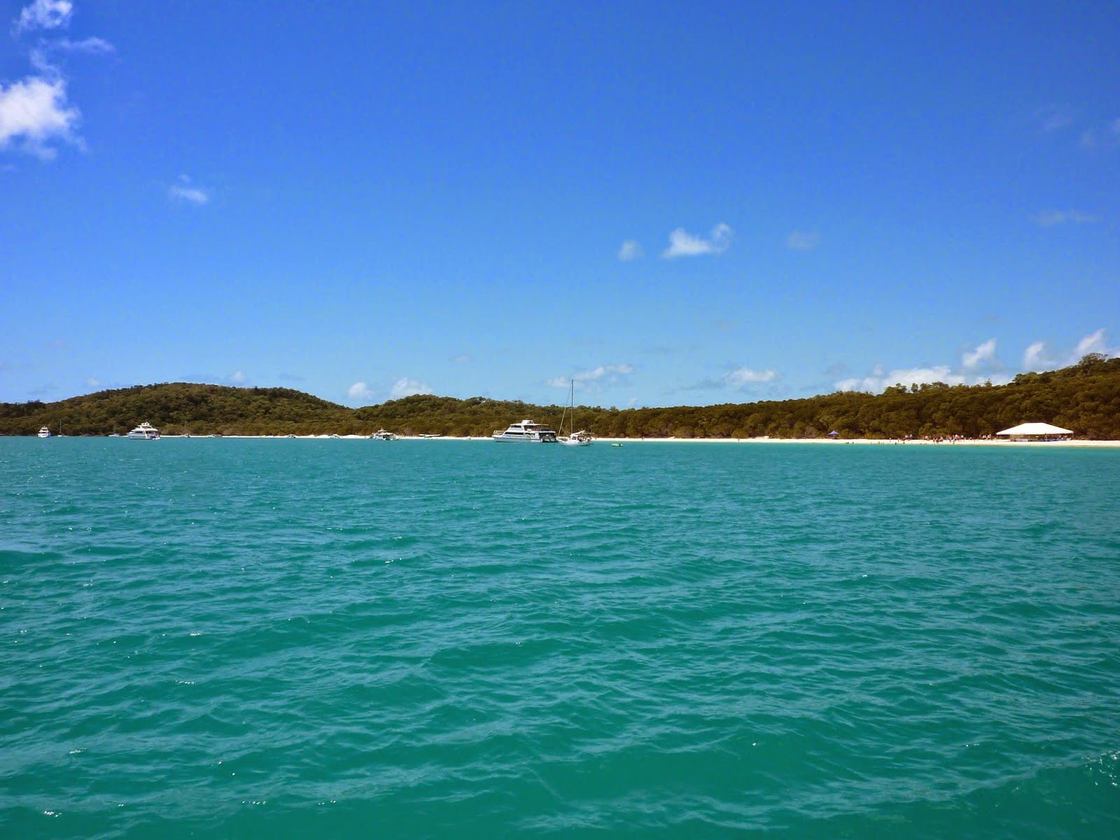 flittern australien dubai whitsunday islands oder 5 sch nster strand der welt. Black Bedroom Furniture Sets. Home Design Ideas