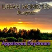 Appaloosa Daydream
