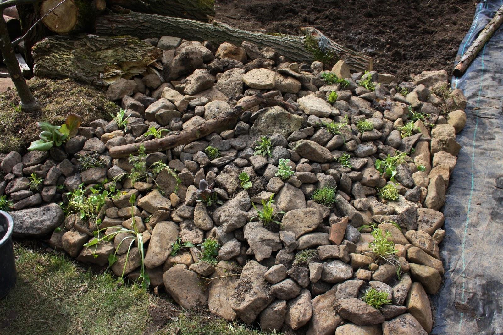 schattiger steingarten anlegen 104555 eine. Black Bedroom Furniture Sets. Home Design Ideas