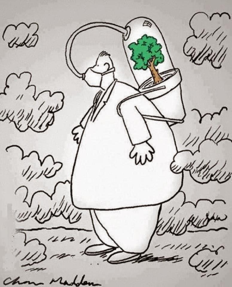 Orman ve temiz hava ile ilgili resim ve karikatürler