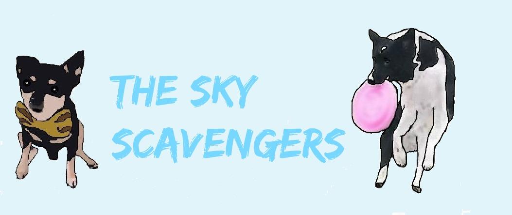 the Sky scavangers