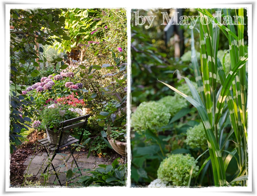 schattengarten mayodans home garden crafts. Black Bedroom Furniture Sets. Home Design Ideas