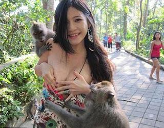 Charmian Chen, Terkenal Setelah Bajunya dipelorotkan Monyet di Bali