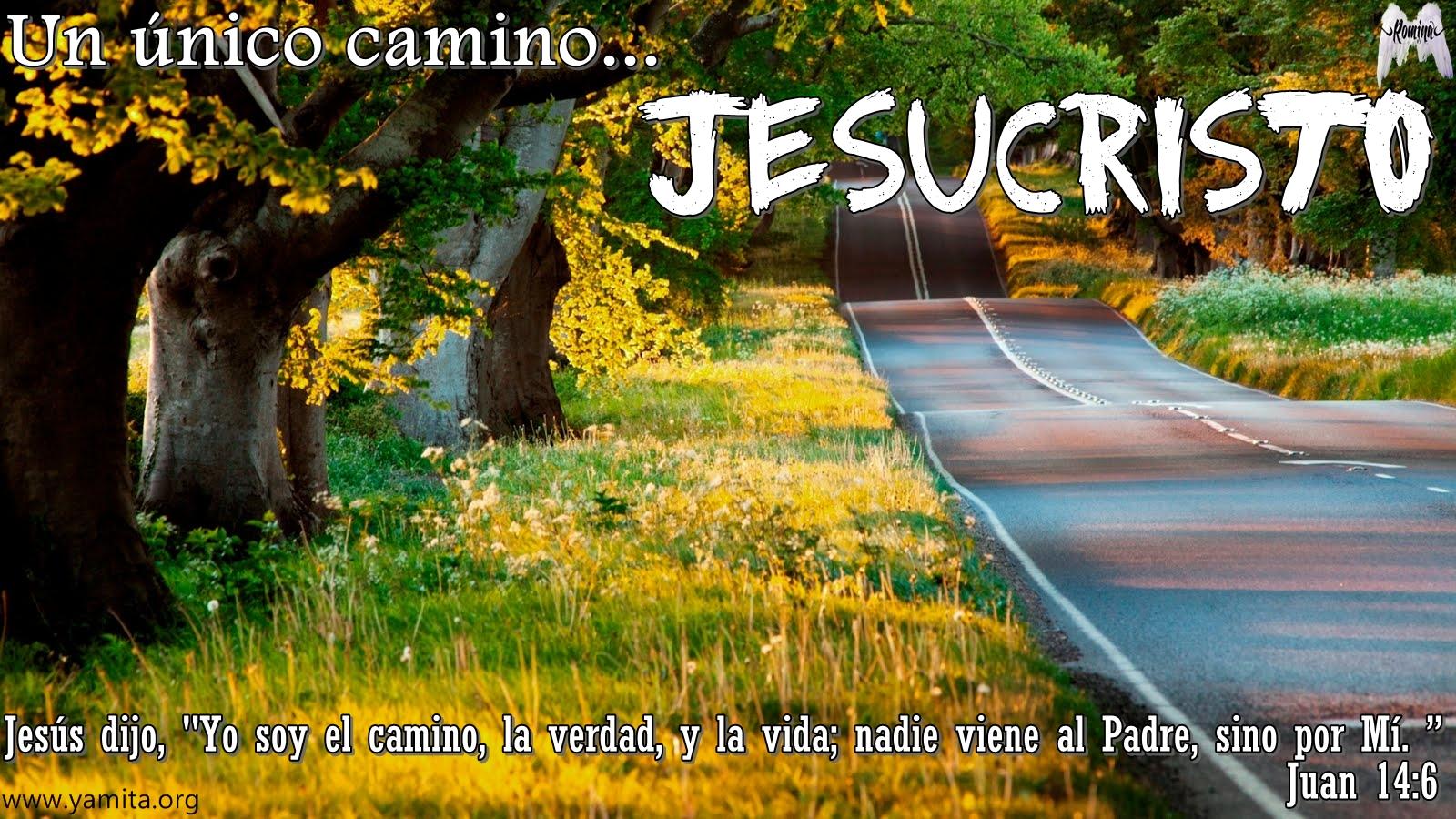 http://1.bp.blogspot.com/-_0ACs5h5D0k/T0U1prlJ8HI/AAAAAAAAAwE/vrvUgpkT7i8/s1600/paisajes-naturales---102.jpg
