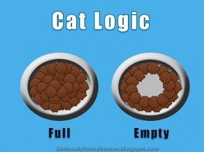 Cat Logic for Food Bowl - Funny Photo