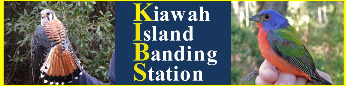 Kiawah Island Banding Station