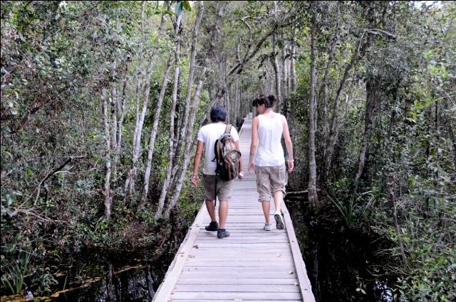 Taman Nasional Tanjung Puting 4