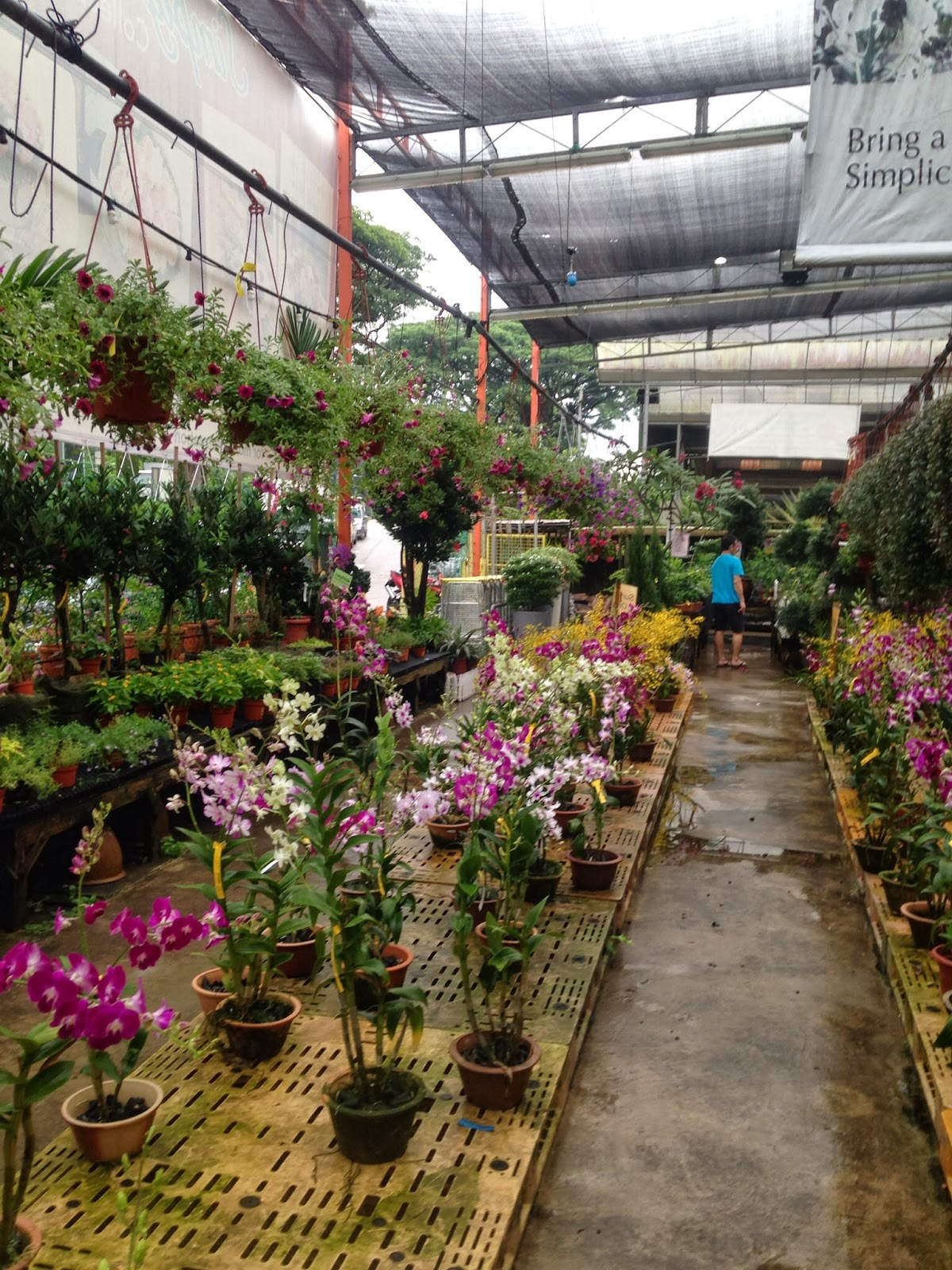 Main View Of Island Landscape Nursery Pte Ltd Building Image