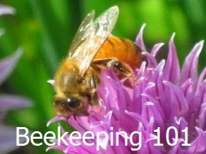 Learn to bee a Beekeeper free