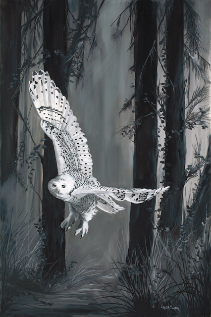 White Owl - Oil on Canvas by: Laura Curtin