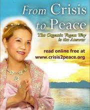 From Crisis to Peace - ebook