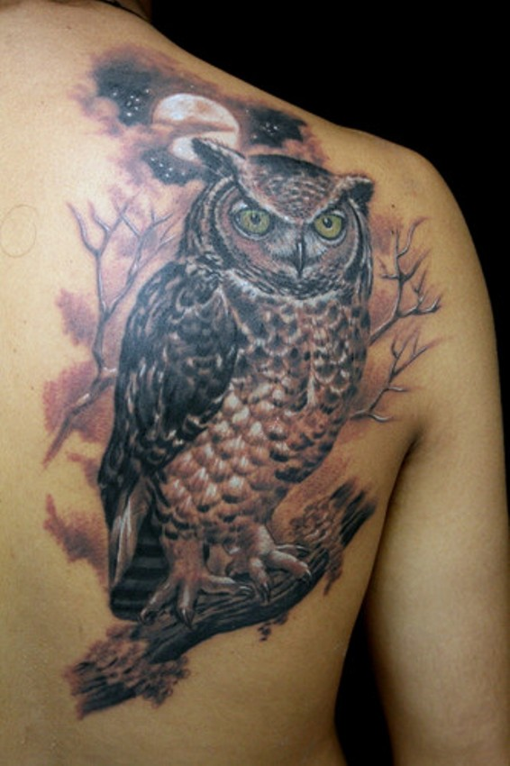 De Coruja Tattoo Pictures To Pin On Pinterest