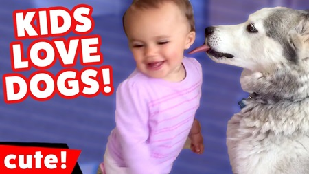 Cute Kids Love Funny Dogs Home Video Bloopers Caught On Tape Weekly Compilation