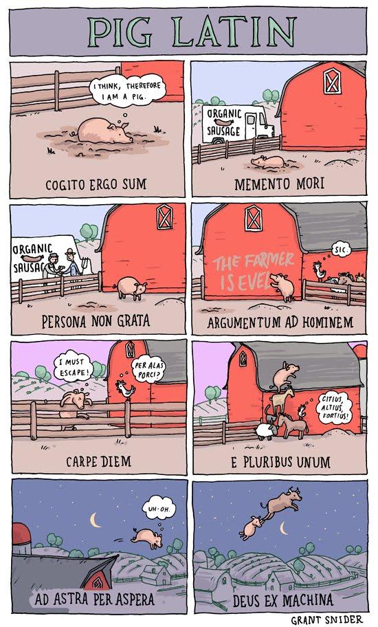 ¡Un cerdo que habla latín!