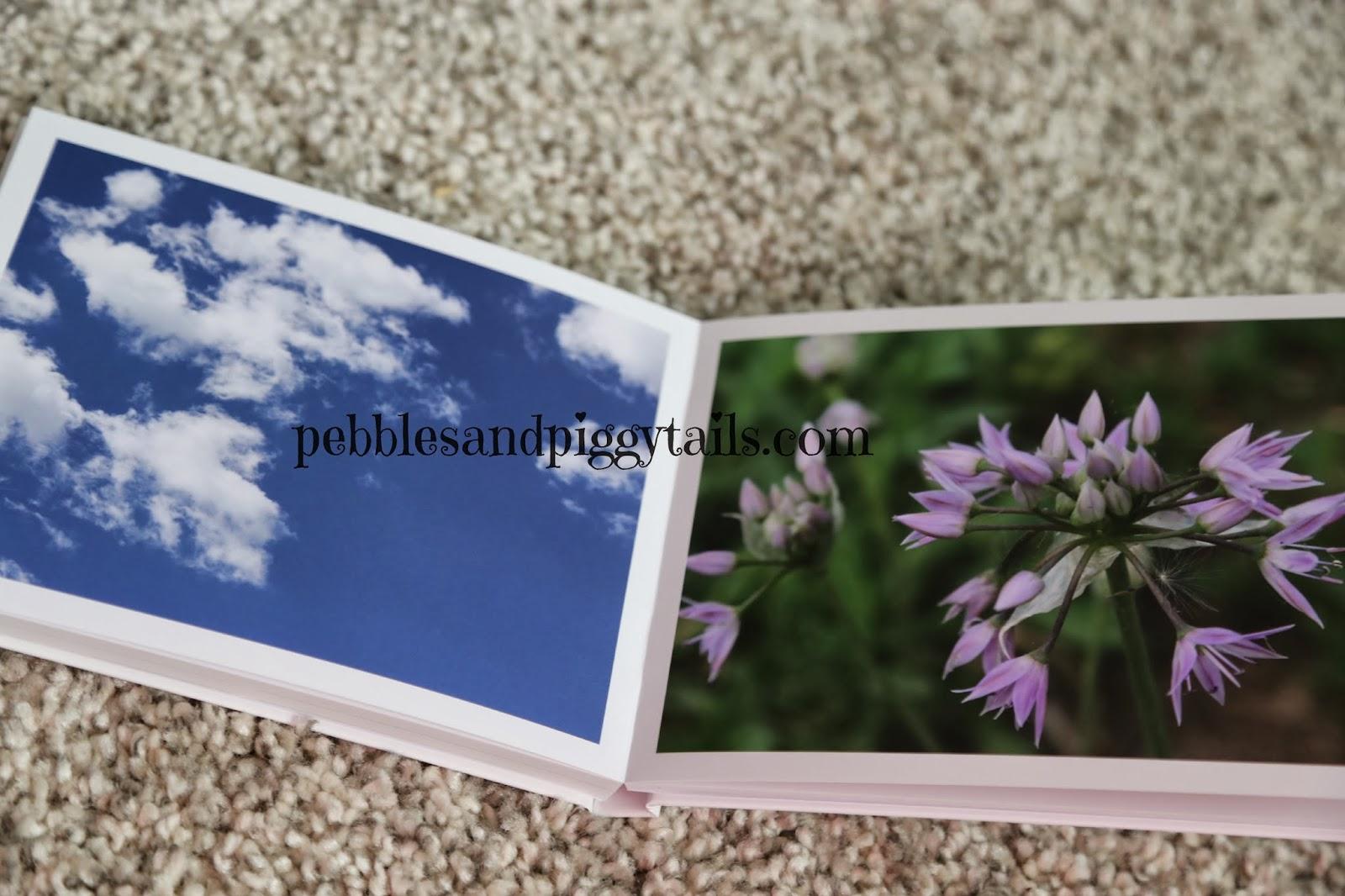 bob books photo books review