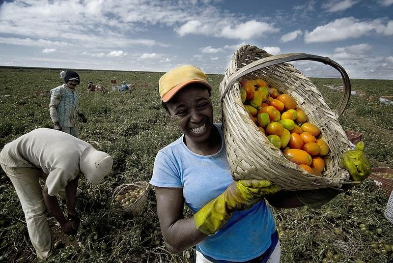 Agricultura e Innovación