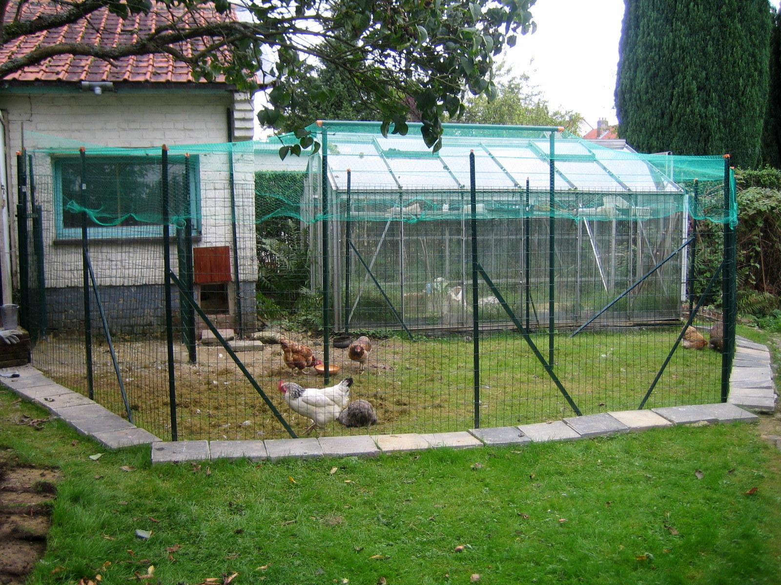 L 39 atelier de ninoun encore un nouvel en cours et plein d for Maison pour les poules