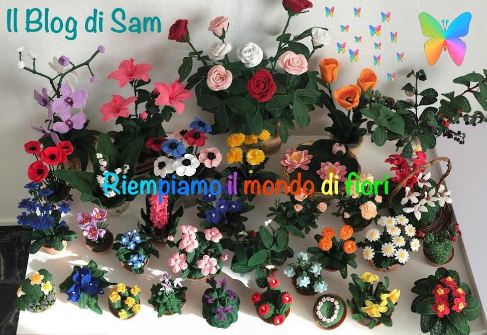 Il Blog di Sam