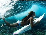 DAILY SURFER CHICKS