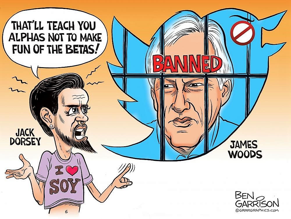 Did You See What Happened to James Woods