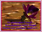 MEU 5ºSELINHO QUE GANHEI DA AMIGA NILCE http://nilceeasartes.blogspot.com