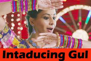 Intaducing Gul