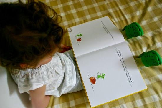 libro infantil La avellana