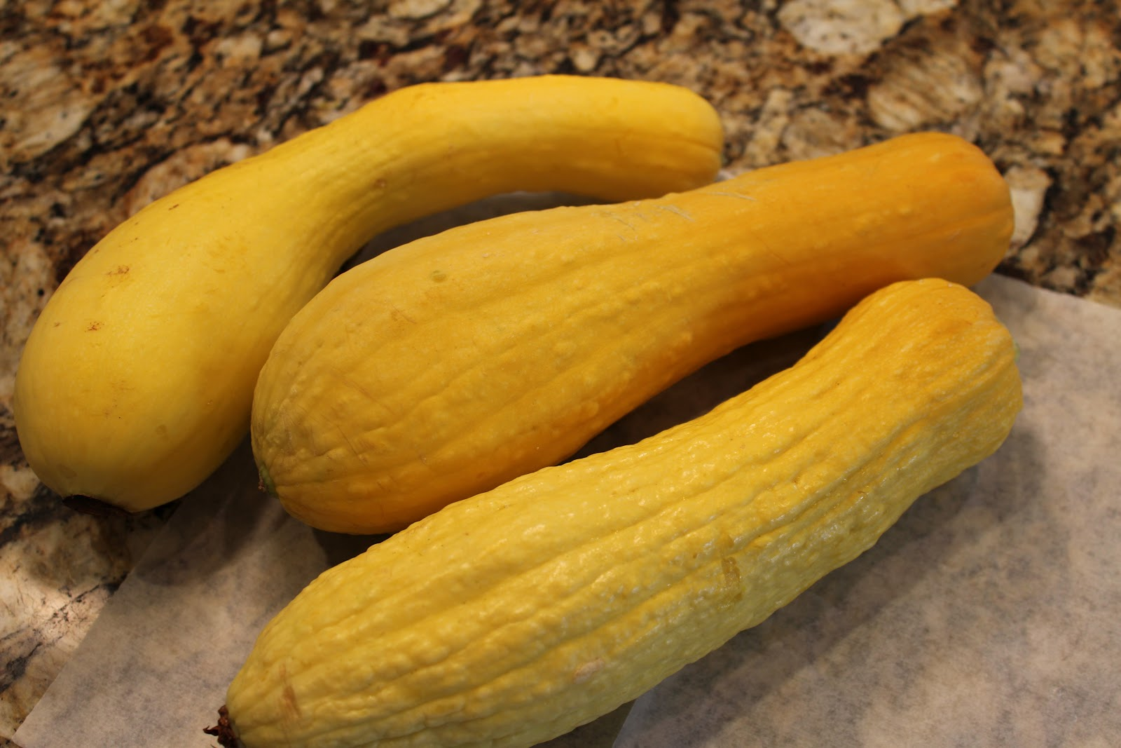 Food Garden Recipes: Yellow Squash Chips