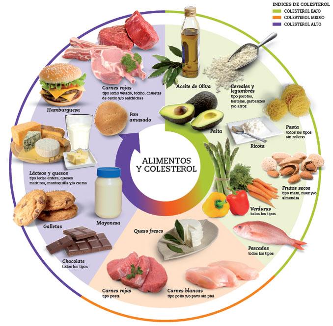 Sala de observa o o que voc precisa entender sobre o colesterol para se cuidar melhor - Alimentos que provocan colesterol ...