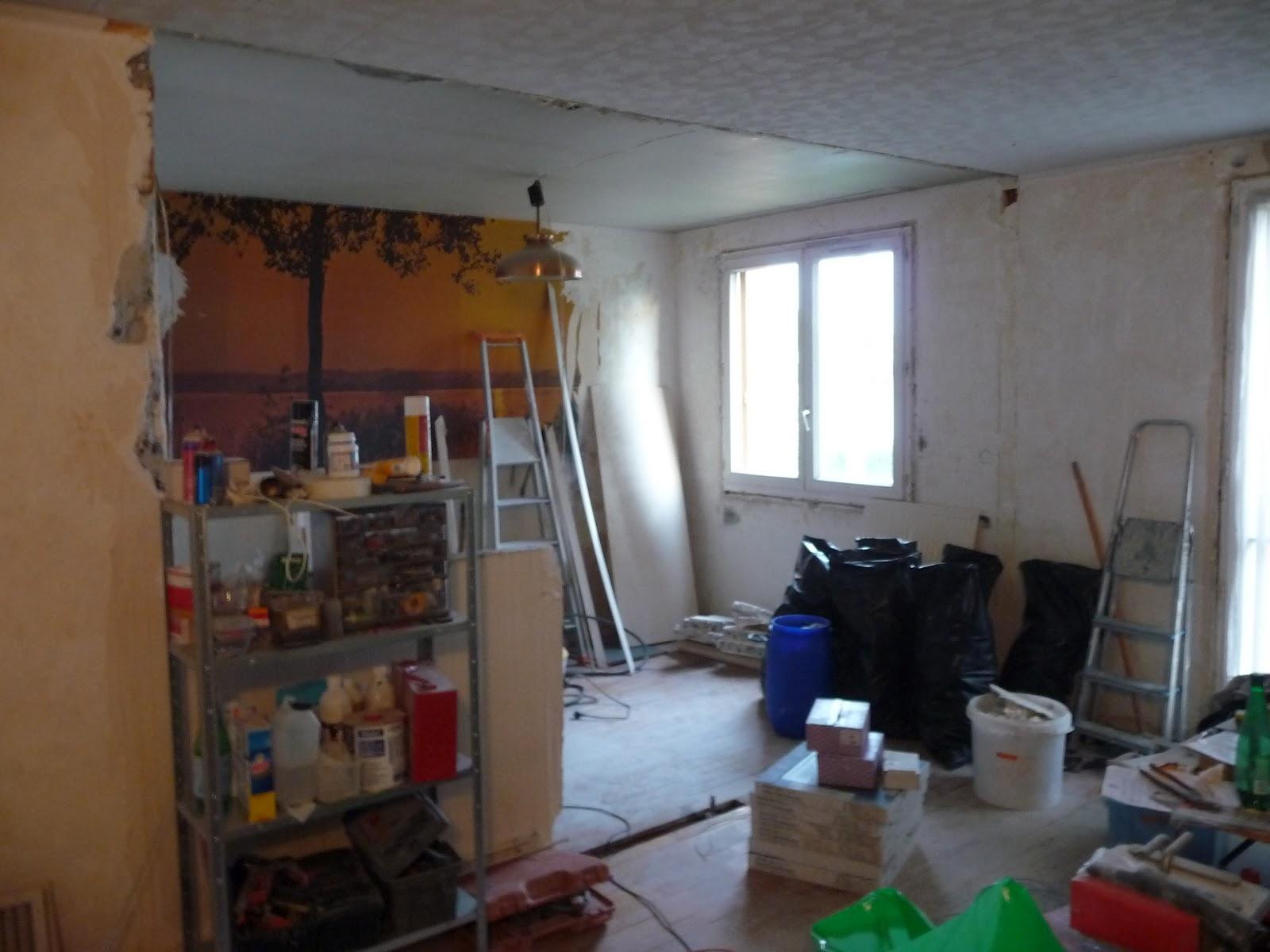 R novation d 39 un appartement salon et salle manger for Renovation salle a manger